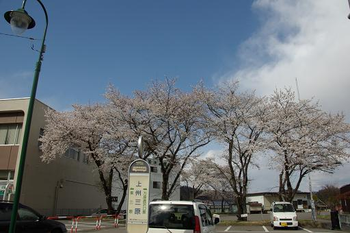 110429B001cherry in jyoushumihara