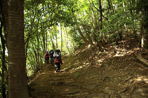 110504-07inariyama course2