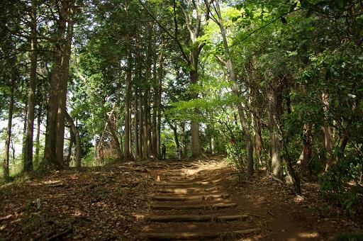 110504-13inariyama course3