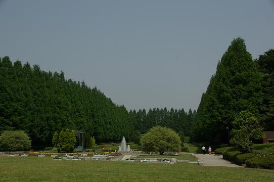 110521-07funsui hiroba