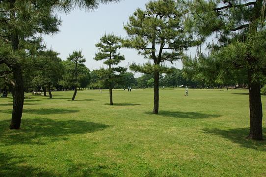 110521-16shibafu hiroba view