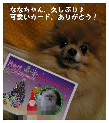 カードありがとう!