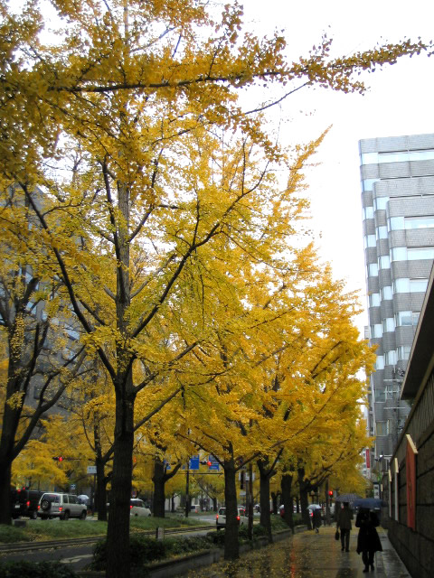 2009-12-03-006.jpg