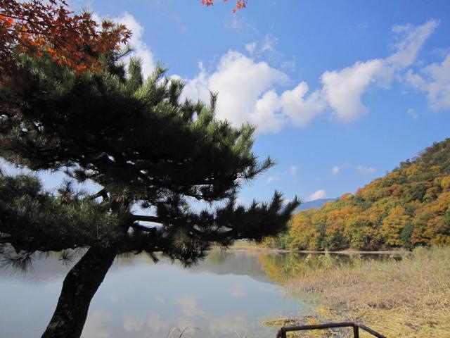 京都旅行09年11月24~27日 322