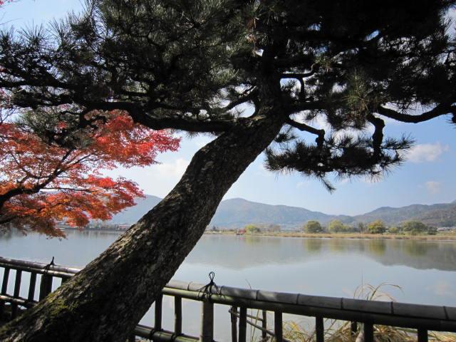 京都旅行09年11月24~27日 324