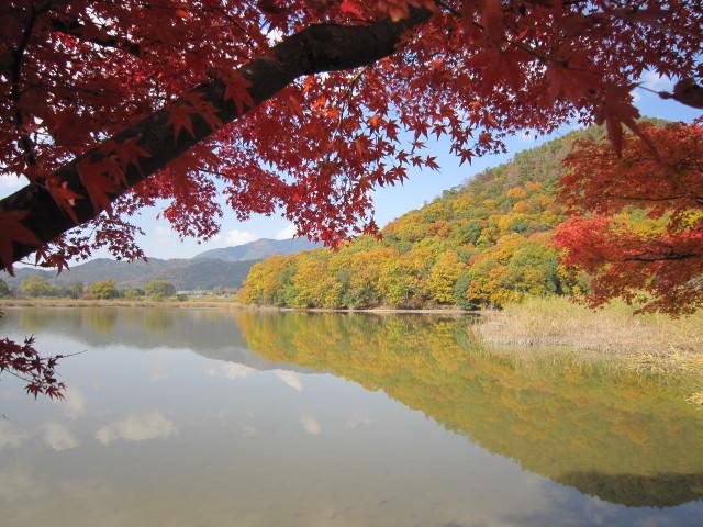 京都旅行09年11月24~27日 327