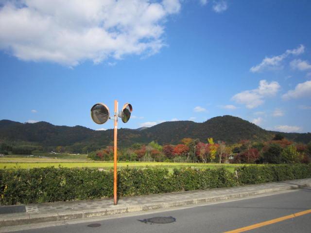 京都旅行09年11月24~27日 362