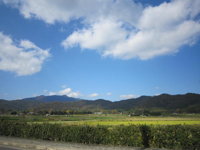 京都旅行09年11月24~27日 363