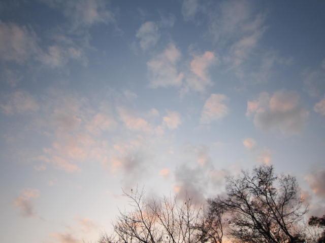 京都旅行09年11月24~27日 402