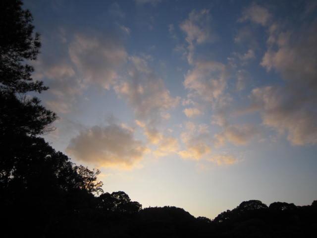 京都旅行09年11月24~27日 394