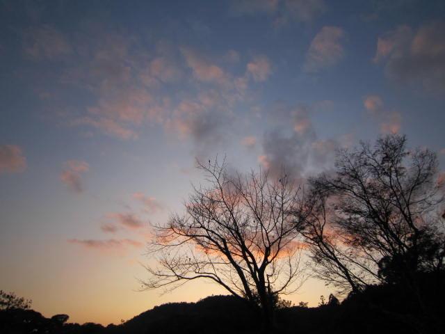 京都旅行09年11月24~27日 400