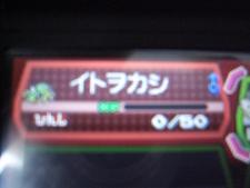 agyo02002.jpg