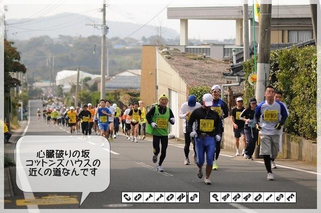 菜の花マラソン003