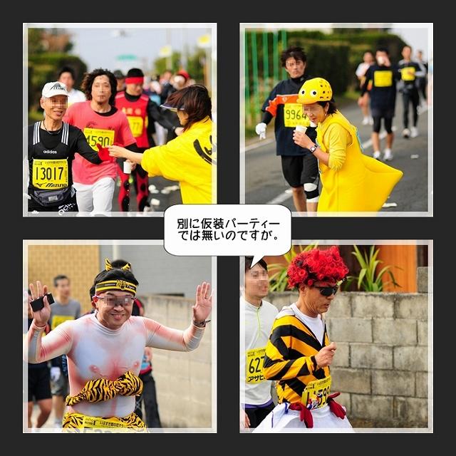 菜の花マラソン004