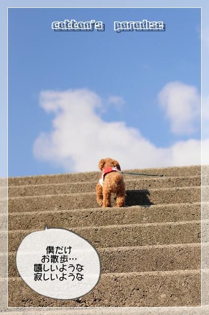 一人の散歩01