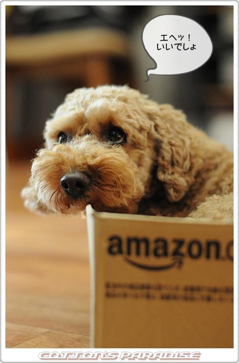 Amazon箱03