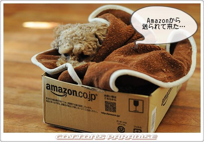 Amazon箱01