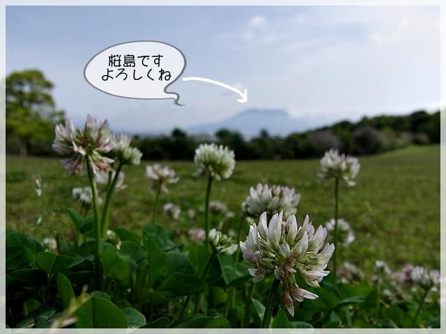 去勢の日04