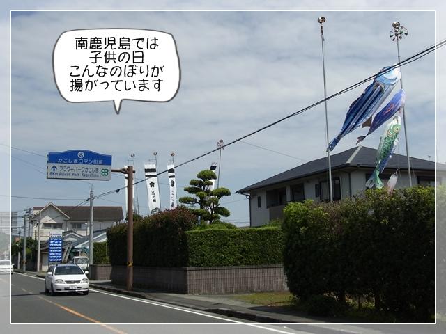 虎太郎カットす!01