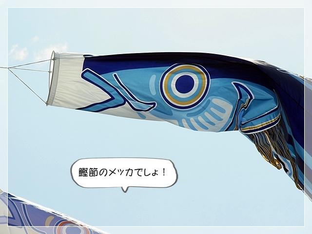 虎太郎カットす!03
