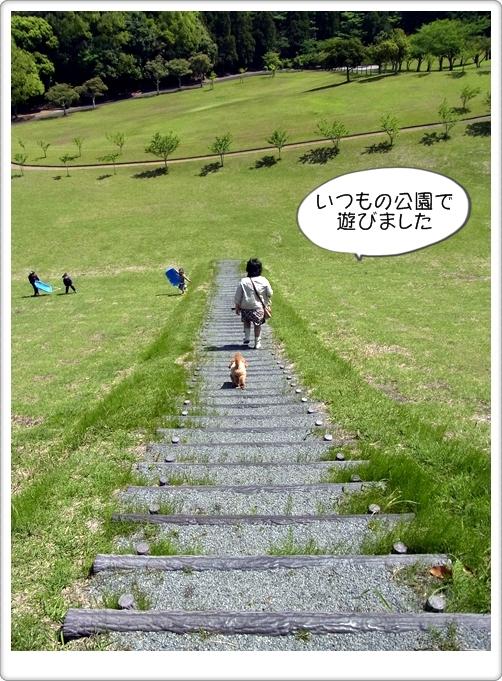 新そば屋発見01