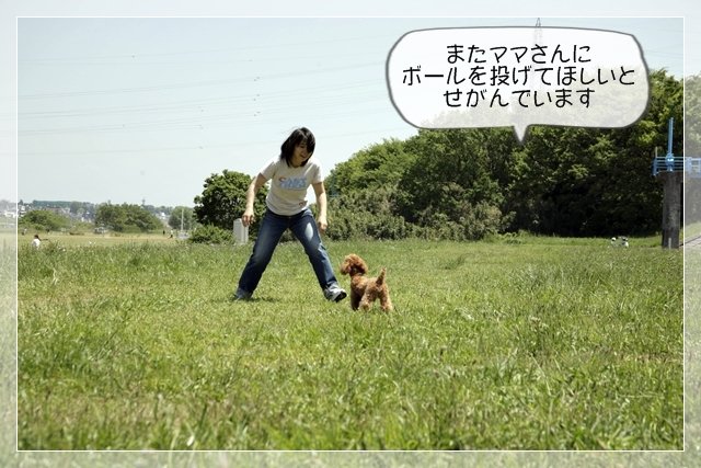 虎太郎06