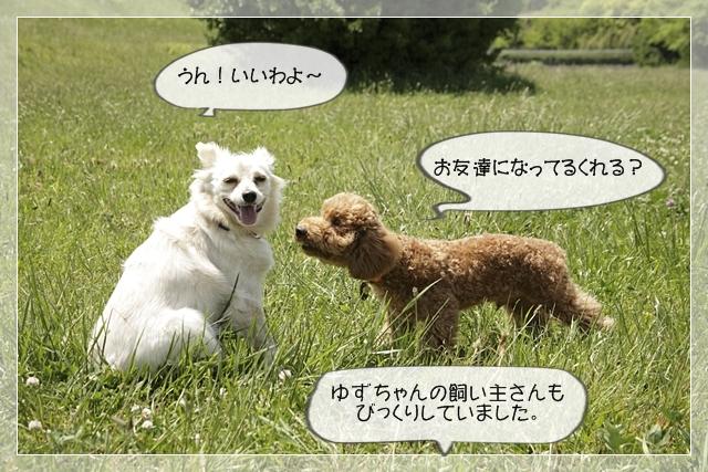 虎太郎10