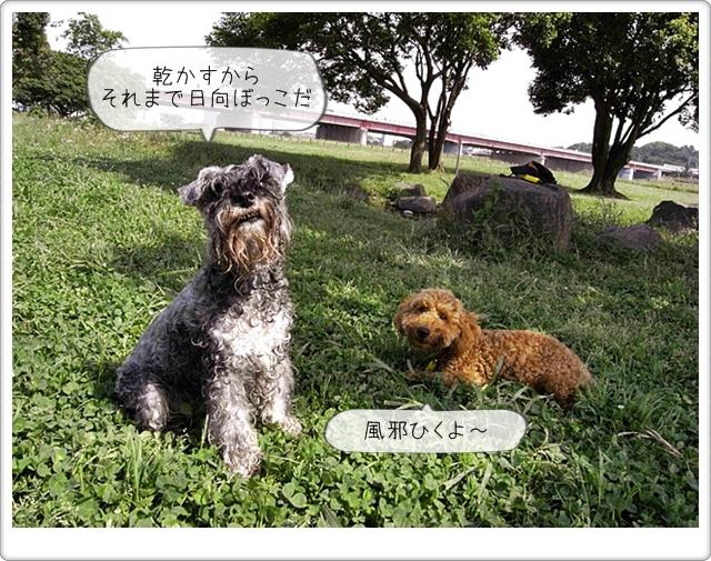 虎太郎の友達10