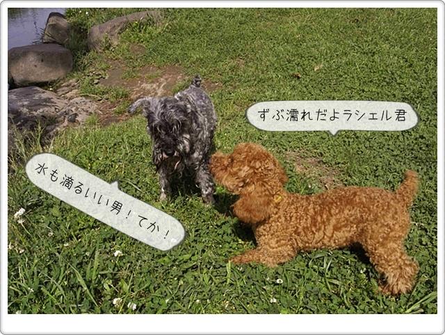 虎太郎の友達09