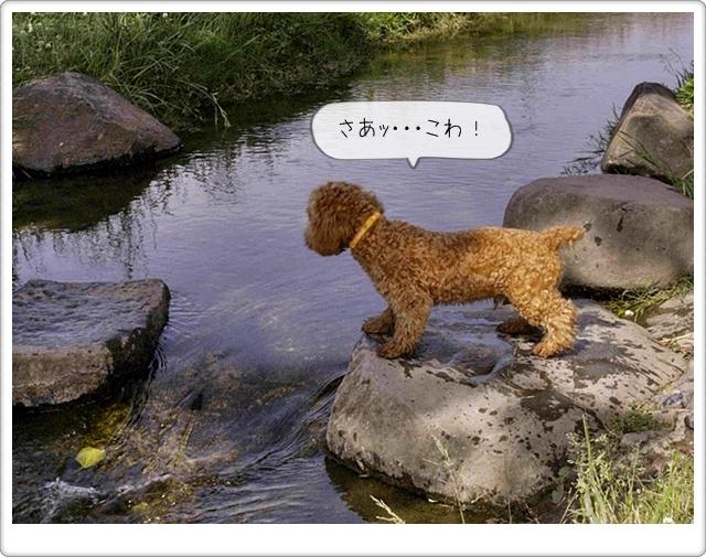 虎太郎の友達05