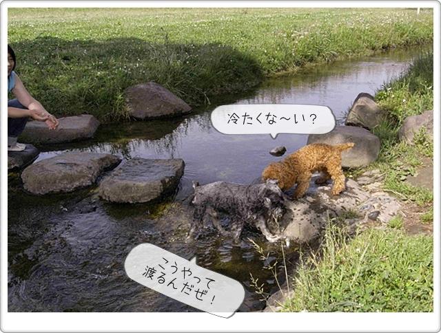 虎太郎の友達08