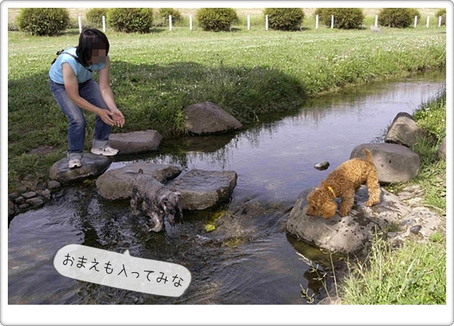 虎太郎の友達07