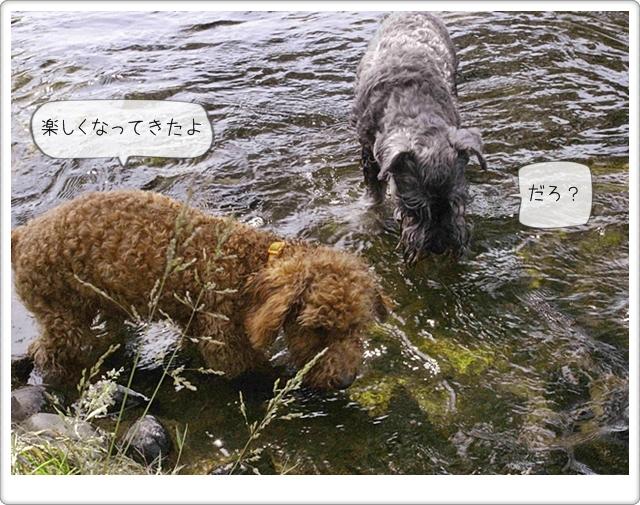 虎太郎の友達14