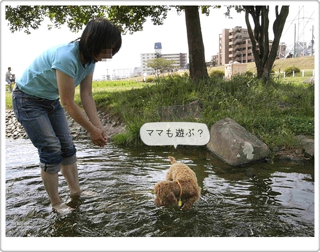 虎太郎の友達17