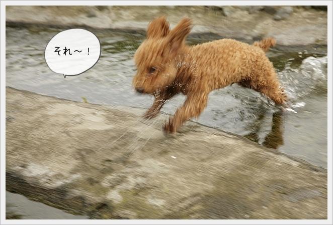 虎太郎日記12