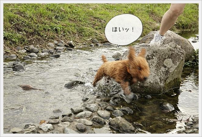 虎太郎日記13