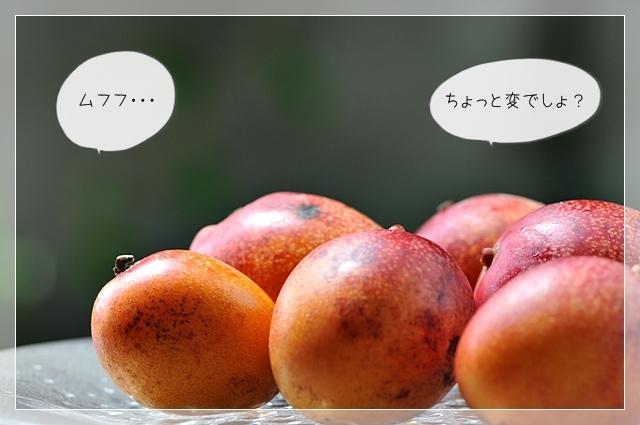 マンゴー!06
