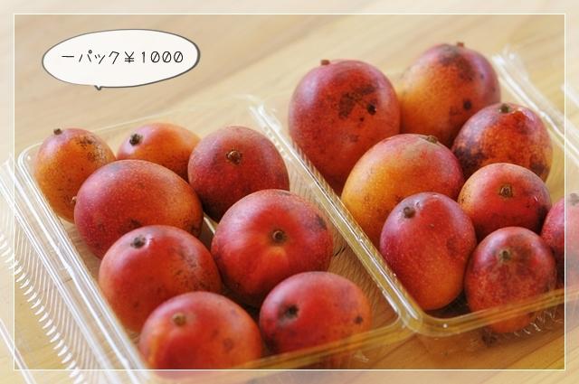 マンゴー!09