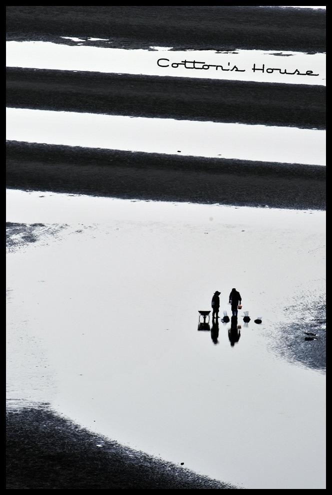 おこしき海岸07