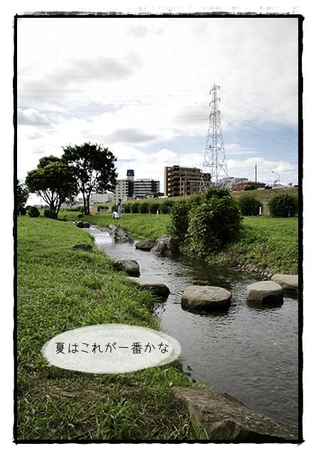 虎太郎日記501