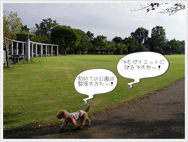 お散歩02