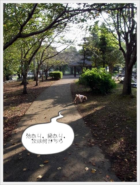 お散歩07