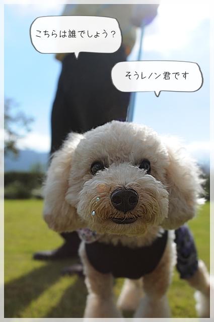 ワンコ達02