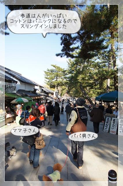奈良翌日06