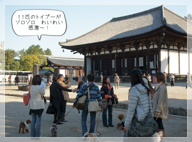 奈良翌日04