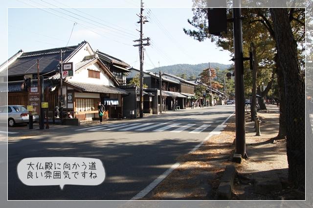 奈良翌日05