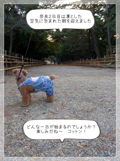 奈良翌日01