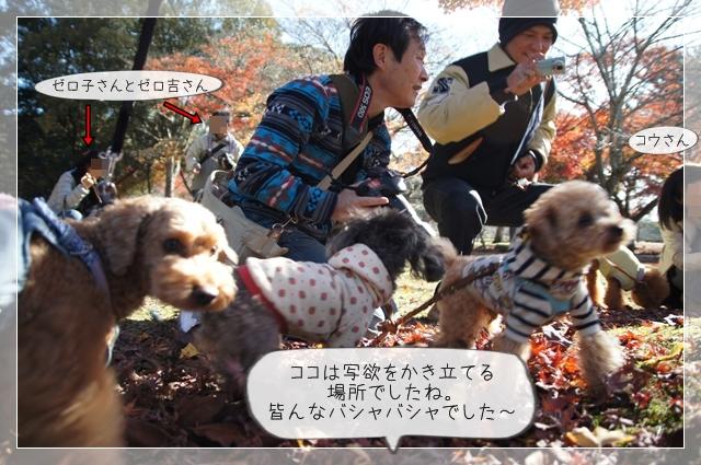 奈良翌日11