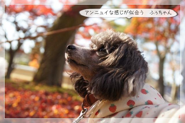奈良翌日15