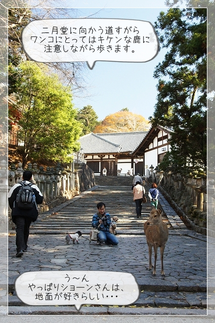 奈良後半01